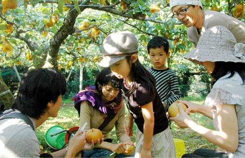 家族の梨狩り